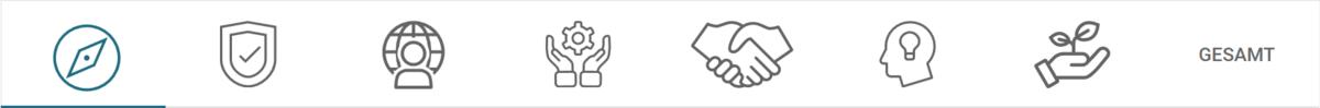 Jedes Icon steht für eine der 7 Bewertungskriterien